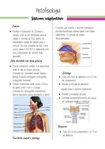 Histofisiologia respiratório