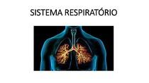 Respiração X Ventilação - Sistema Respiratório