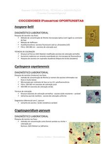 Resumo Diagnostico Tecnicas Imunológico