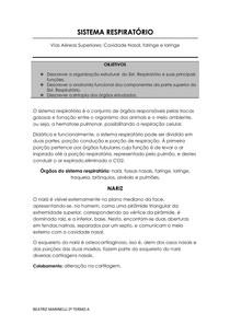 Sistema Respiratório - Anatomia