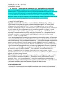 Tutorial: Biomecânica do Quadril e Coxa