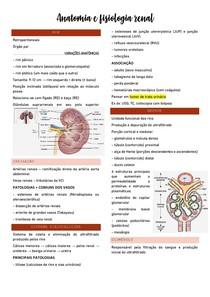 Anatomia e Fisiologia Renal