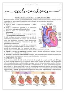 Ciclo Cardiaco (mini resumo)