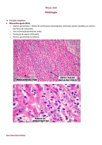 Módulo AAS histologia docx