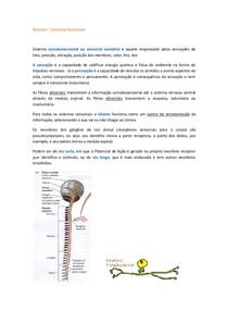 Resumo Purves Sistemas Sensoriais