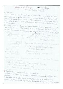 Resumo - Cálculo I: Integrais (Victor Rafael)