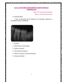 anatomia radiografica dento maxilo mandibular aula 5