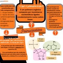 Polinucleotídeos - MAPA MENTAL
