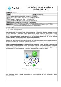 Relatório Polaridade Molecular   Solubilidade e Miscibilidade final