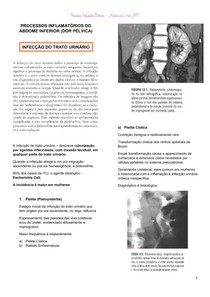 Resumo - ITU, DIP, Aneurisma e Dissecção de Aorta e Trombose Venosa Mesentérica