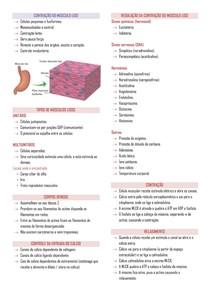 Contração do músculo liso