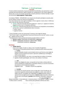 Resumão 2ª prova Parasitologia