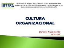 2 Cultura Organizacional (1)