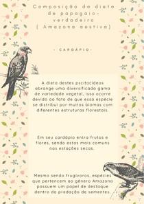 Papagaio-verdadeiro (Amazona aestiva) - Dieta