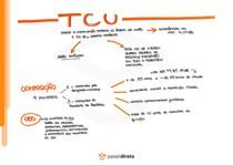 Função fiscalizatória e Tribunal de Contas da União - Mapa mental (parte 2)