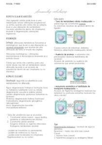 Acúmulos celulares - patologia geral