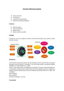 Anemia infecciosa equina