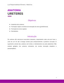 Ureteres