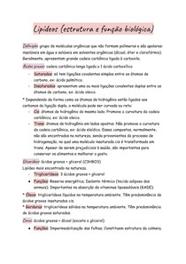 Lipídeos (estrutura e função biológica)