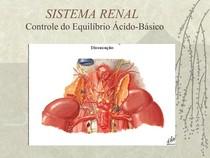 sistema renal  equilibrio acido basico