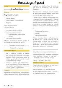 Microbiologia: Corynebacteriaceae