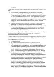 Eritropoiese e destruição eritrocitária