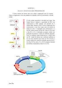 Ciclo celular - Genética