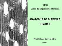 Aula 1 Anatomia da Madeira