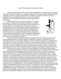 Biomicroscopia do segmento anterior
