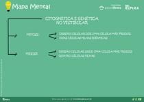Mapa Mental CITOGNÉTICA E GENÉTICA