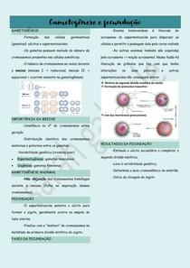 Gametogênese e fecundação