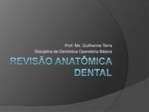 Revisão Anatomia Dental
