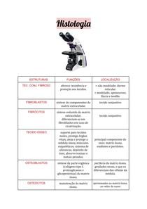 Histologia - Tecido Conjuntivo