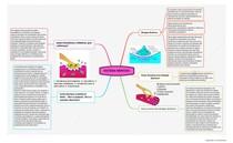 Mapa Mental Sistema Nervoso Sinapses Químicas