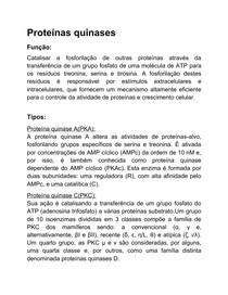 Proteínas quinases