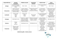 LESÕES VESICO BOLHOSAS - LISTA 4