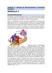 WEBAULA 2-Unidade 2 - Noções de Macroeconomia e Economia Brasileira