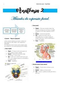 Músculos da expressão facial - ANATOMIA