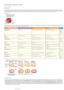 Vascularização e Inervação do Coração