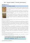 Wa1 - Ciências Contábeis - Seminário Interdisciplinar I