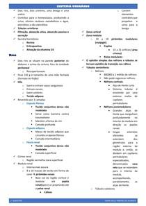 PROBLEMA 8 sistema urinário (resumo)