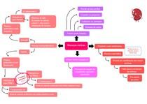 mapa mental cistite