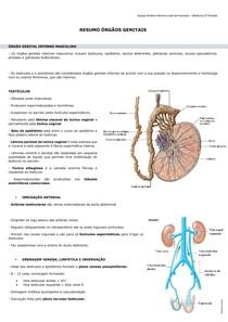 próstata o plexo venoso pampiniformento
