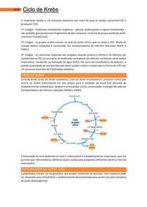 Ciclo de Krebs - Bases Celulares e Moleculares 2