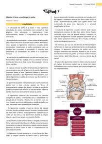 Lesões meniscais e lesão do ligamento cruzado anterior, morfofisiologia do joelho