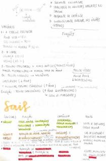 bioquímica/ sais