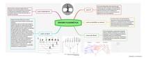 Mapa Mental Árvore Filogenética
