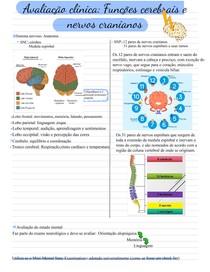 Funções cerebrais e nervos cranianos-exame físico