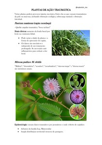 PLANTAS DE AÇÃO TRAUMÁTICA E FOTOSSENSIBILIZAÇÃO