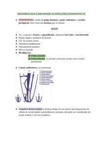 MICROBIOLOGIA E IMUNIDADE ÀS INFECÇÕES ENDODÔNTICAS